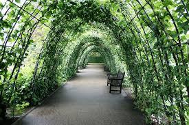 Diy Garden Trellis Ideas 21 Innovative And Easy Diy Garden Trellis Ideas Gardenoid