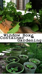 Window Box For Herbs Mobile Gardening With Window Boxes And Containers U2013 For Movers And