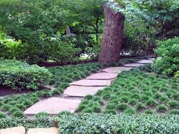 alternatives to grass in backyard mediterranean landscape