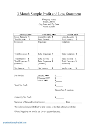 pupil report template pupil report template cool non profit monthly financial report