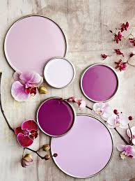 violet purple to decorate a bedroom with purple walls
