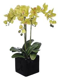 silk orchids house of silk flowers artificial stem