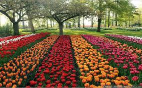 100 flower garden in how to make a flower garden gardening