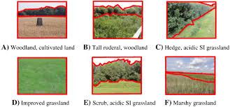 si e habitat automatic habitat classification image analysis and random