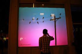 digital window bird on a wire an interactive window display of a digital flock