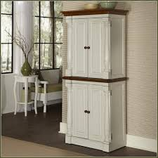 Cheap Pantry Cabinets For Kitchen Kitchen Cheap Pantry Cabinet Home Depot Kitchen Pantry Pre Built