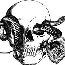 human skull snake tattoo art rose png digitalgraphicsshop