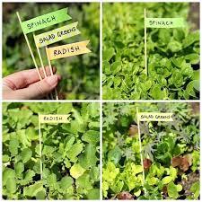 diy herb garden name tags diy garden tags diy vegetable garden