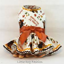 turkey thanksgiving dresses for dogs