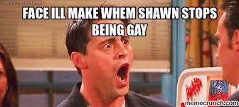 Shawn Meme - image gif w 500 c 1