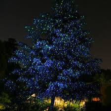 Stringing Lights In Backyard by Outdoor String And Festive Lighting Outdoor Lighting Perspectives
