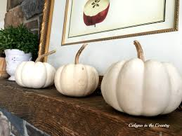 white pumpkins decorating with white pumpkins calypso in the country
