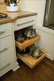 Kitchen Cabinet Pull Out Baskets Kitchen Pull Out Cabinet Shelves Cost Of Kitchen Cabinets