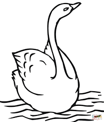 swimming swan coloring page free printable coloring pages