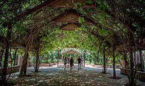Season Botanic Gardens Albuquerque Botanic Garden 5th In Nation Albuquerque Journal