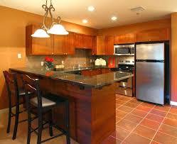 Orange Kitchen Ideas Burnt Orange Kitchen Cabinets Interior Designorange And Brown