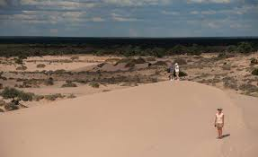 debbie u0026 geoff u0027s australian safari april 2017 blog