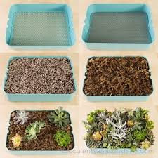 how to plant a succulent garden in an ikea cart succulents and