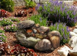Best Rock Gardens Inspiring Pictures Of Small Rock Gardens Pictures Best Ideas
