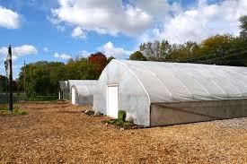 featured blog posts rid all green partnership u2014 growing food