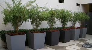 modern planters and pots plant sony dsc extra large planters gratifying extra large black