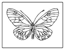 cool butterfly coloring pages resolution 467627 coloring pages