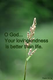 jesus quotes gratitude 316 best gratitude thankfulness images on pinterest motivational