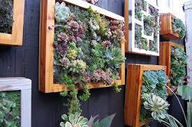 utilitarian franchise garden far out flora