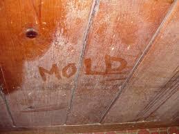 home mold dust mite problems in clarksville nashville jackson