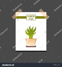 illustration cartoon isolated cactus icon house stock illustration