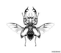 stag beetle with open wings flying top view of symmetry sketch