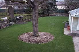 Drainage Problems In Backyard - yard drainage solutions digrightin landscaping
