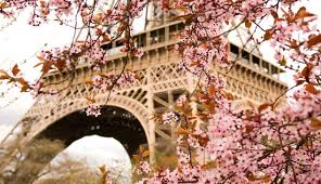 Visit The Eiffel Tower City Tour Of Paris And Cruise