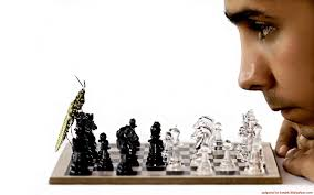 insects chess men funny bug chess pieces wallpaper 1680x1050