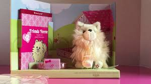 Costco Dog House Reviewing The American Doll Pomeranian At Costco Youtube