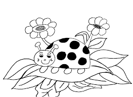 lady bird coloring kids drawing coloring pages marisa