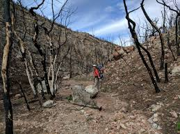 Christmas Tree Permits Colorado Buffalo Creek by Nankoweap Trail Hiking The Grand Canyon U0027s Most Difficult Trail