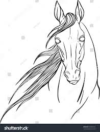 horse portrait coloring page stock vector 543059131 shutterstock