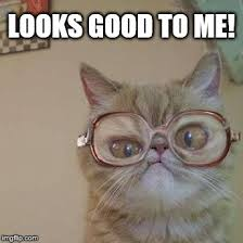 Looks Good To Me Meme - funny cat with glasses imgflip
