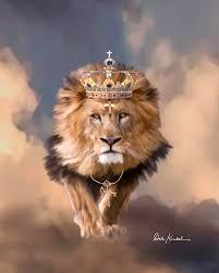 lion tribe judah jesuinricristo lion judah art