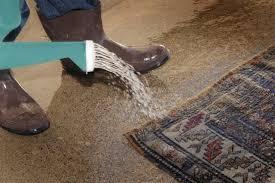 Oriental Rug Cleaning Scottsdale Moetavassolirugs Com Rug Cleaning Moetavassolirugs Com