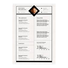Professional Cv Template Resume Template Free Templates For Mac Professional Cv In 89