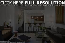 awesome narrow living room design ideas long skinny image