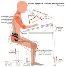 Ergonomic Office Furniture by The Definitive Guide To Choosing The Office Chair For Your Needs