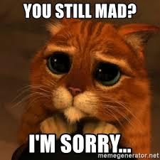 U Still Mad Meme - you still mad i m sorry shrek cat v1 meme generator