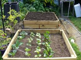 Wood For Raised Vegetable Garden by Unfinished Patio Soil Mix For Wood Raised Bed Vegetable Garden