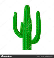 mexican cactus icon in cartoon style isolated on white background