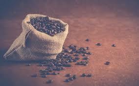 cuisiner des haricots rouges secs comment faire tremper et cuire des haricots rouges secs fiche