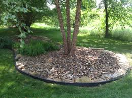 356 best garden drought images on pinterest landscaping ideas