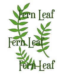 fern leaf svg cut file leaf template paper flower templates
